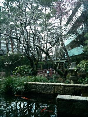 世田谷文学館のロビー