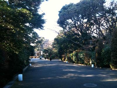東京都庭園美術館へ続く道